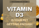 Vitamin D3 and Pets